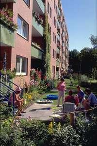 Mietergärten im Birckholtzweg